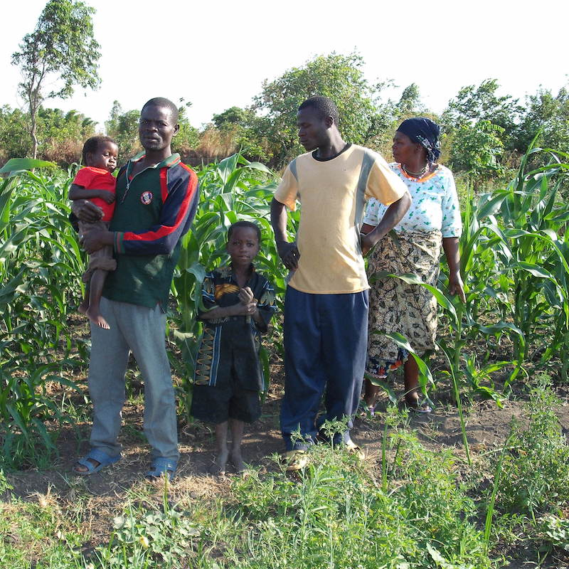 Chinthowa family come to look at their crops.